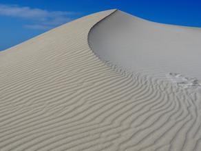 Fowlers Bay Camping & Dune walking