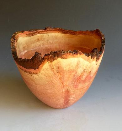 Vase/Bowl in London Plane