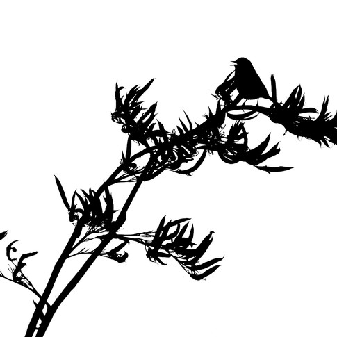 Sparrow on Flax