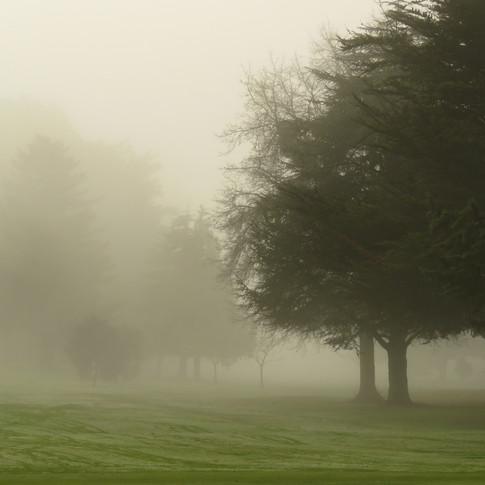 Golf Course Fog