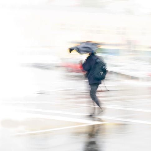 Windy Day, Wellington