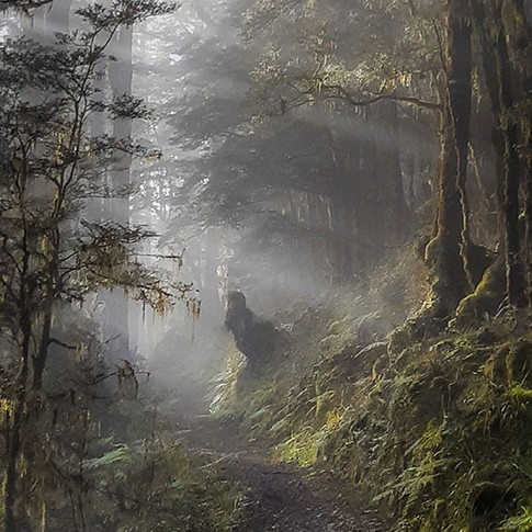 Old Ghostly Trail