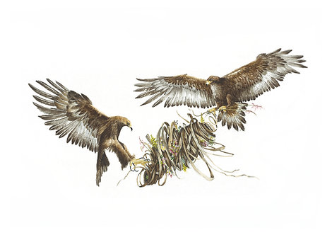 watercolour giclee print of golden eagles with fauna and flora