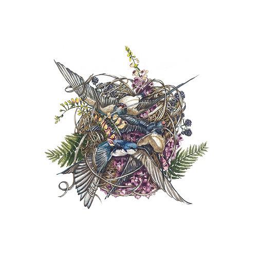 swallows, foxglove and berries from lough dan landscape fine art giclee print