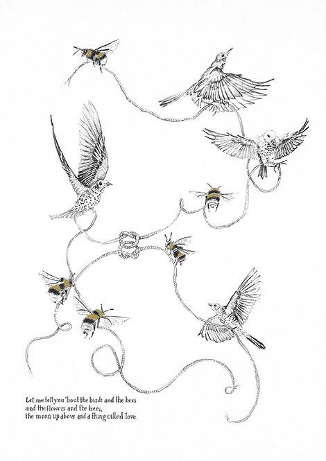 bird drawing, lovers knot, irish artist, pen drawing, print