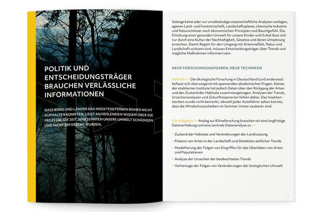 Fides Friedeberg graphic design.jpg