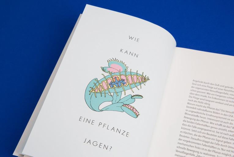 Fides Friedeberg Illustration Buch Besse
