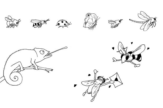 Fides Friedeberg tiny illustration icon