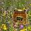Thumbnail: Miel de fleurs 500g