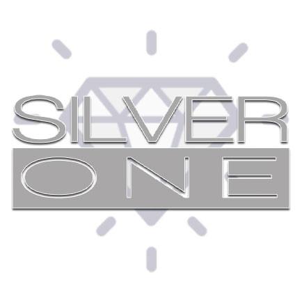 silver-one.jpg