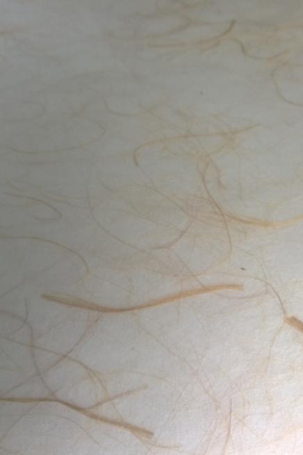 PVC Laminated Shoji Paper - 3.mm Gold Flax 3' x 6'