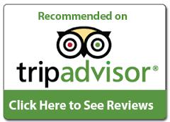 Trip Advisor Reviews link