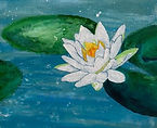 SKFoxArt_3.student water lily painting.j