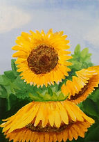 Sunflower painting study.JPG