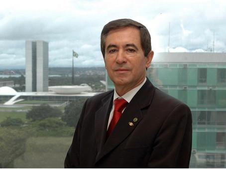 Conselho Nacional do Café destaca as contribuições de avanços tecnológicos para os Cafés do Brasil