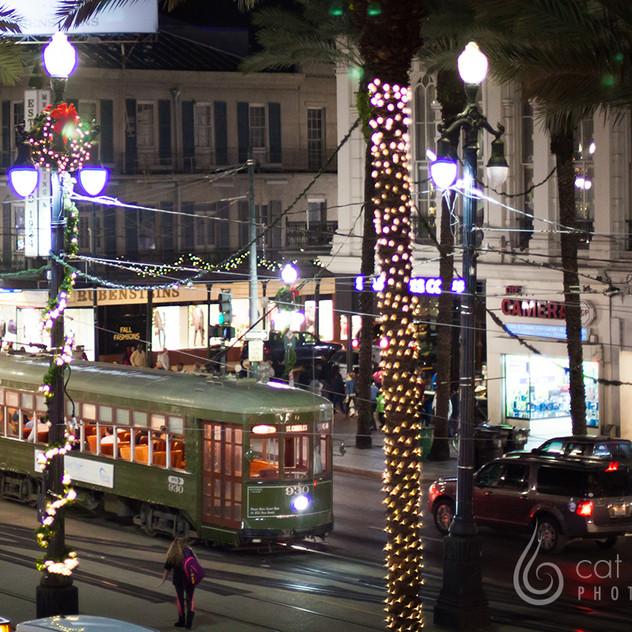 CatLandrum_ChristmasCanalStreet_4