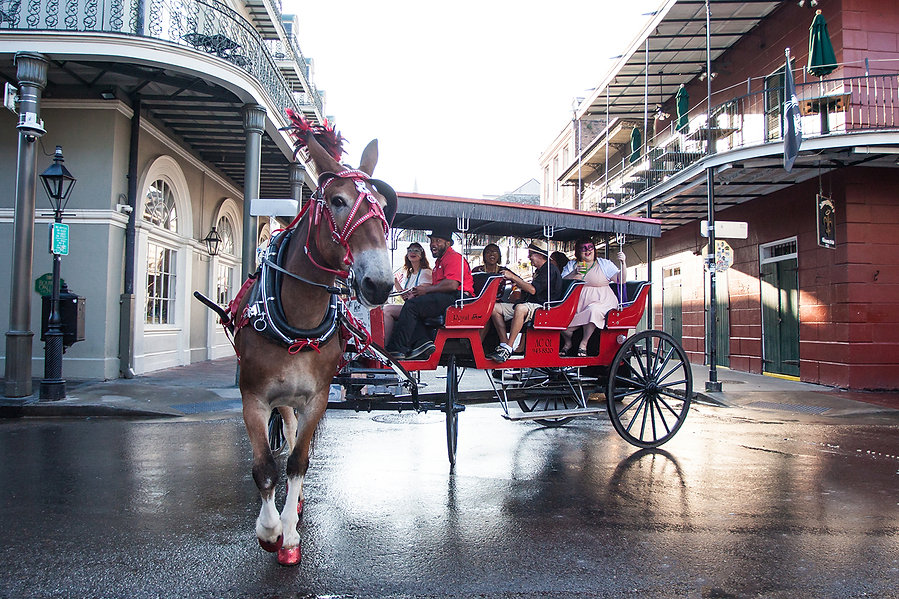 2ndStory_RoyalCarriages_35.jpg