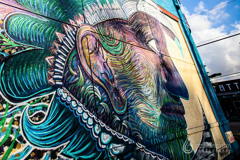 CatLandrumPhoto-Houston-GraffitiPark3