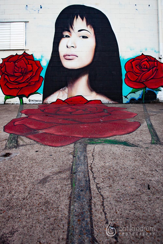 CatLandrumPhoto-Houston-GraffitiPark14