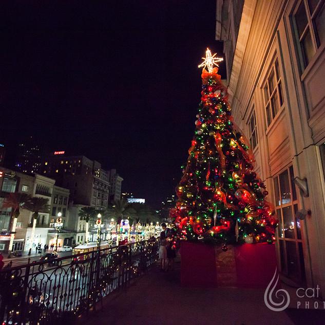 CatLandrum_ChristmasCanalStreet_7