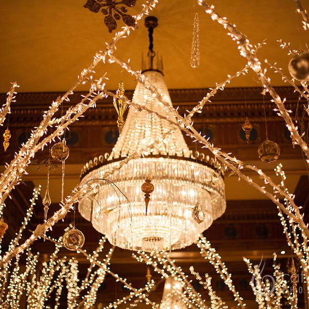 CatLandrum_ChristmasRoosevelt_10
