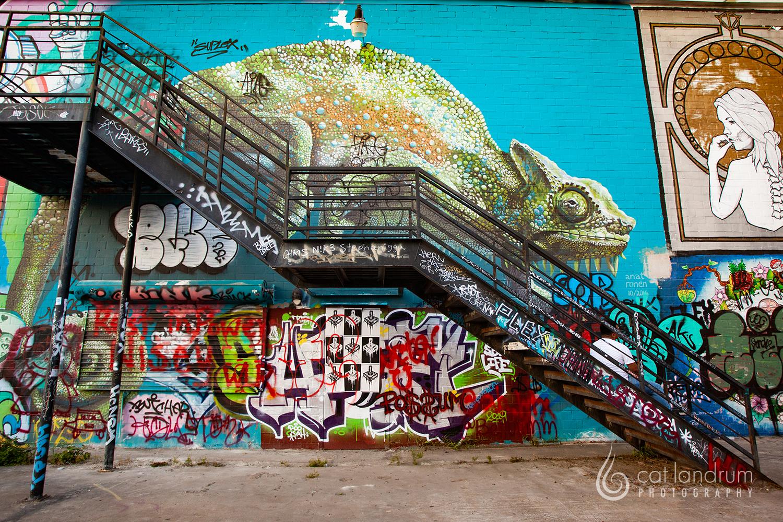 CatLandrumPhoto-Houston-GraffitiPark11