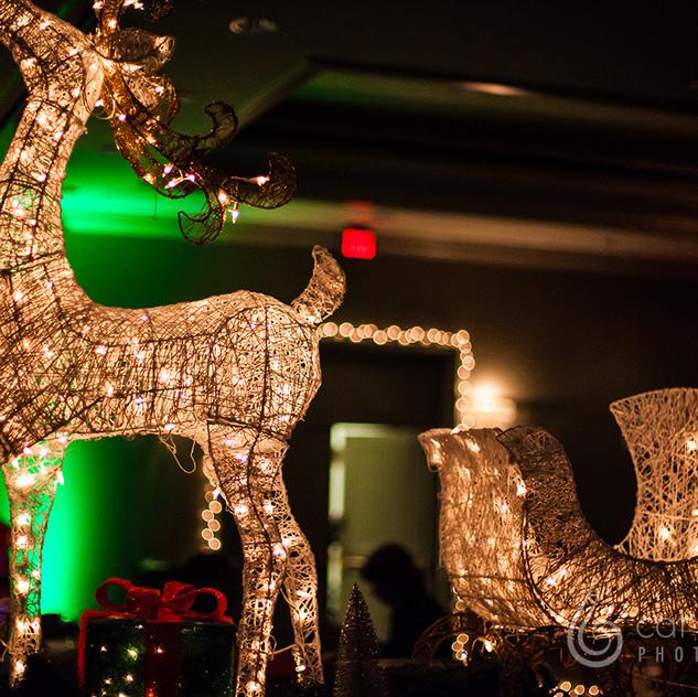 CatLandrum_ChristmasCanalStreet_1