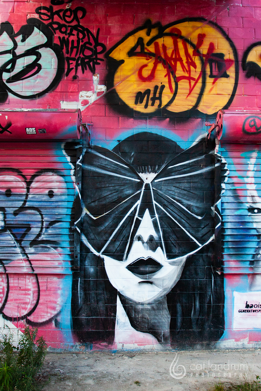 CatLandrumPhoto-Houston-GraffitiPark12
