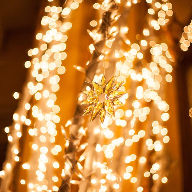 CatLandrum_ChristmasRoosevelt_9