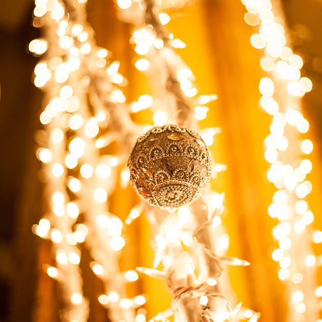 CatLandrum_ChristmasRoosevelt_8