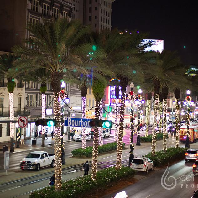 CatLandrum_ChristmasCanalStreet_8