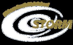 ESHS-logot-min