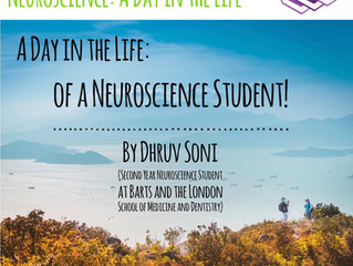 So...What's Being a Neuroscientist Really Like? Read Here!