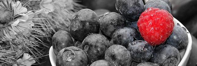 blueberries-1426890_960_720.jpg