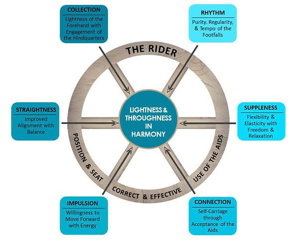 WDAA Training Wheel Description.jpg