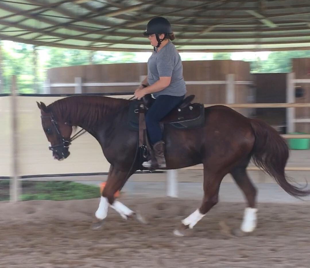 Working with a horse on relaxation and balance
