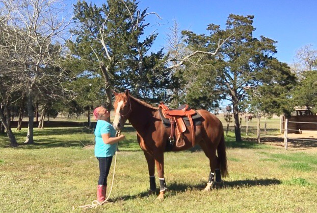 Trainer/owner taking a min with her love, VisStok