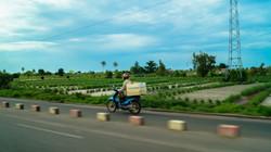 Zemidjan Benin
