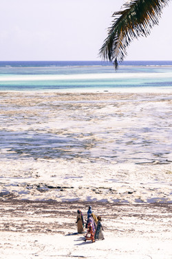 Indian Ocean, Michamvi, Zanzibar, Tanzania,
