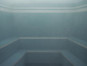 The Steam Bath (L'Etuve)