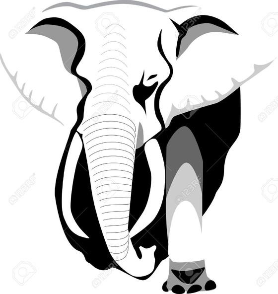 Elephant hunting as aB2B startup