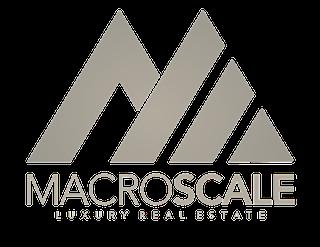 macroscale.png