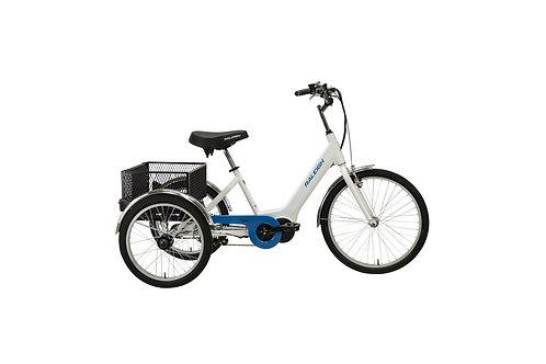 Raleigh Tristar - Electric Bike