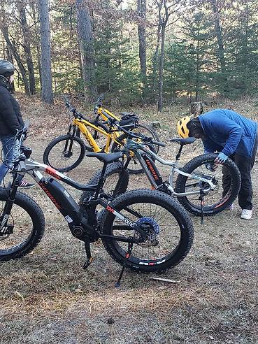 forest-bikes.jpg