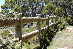 Summit Fence