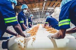Avoller Manufacturing