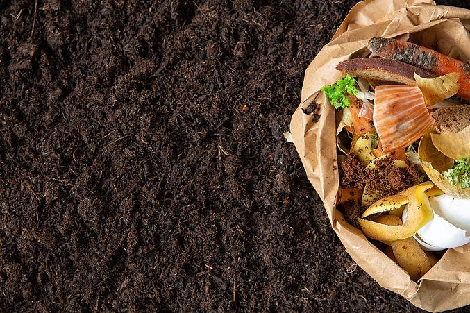 environmental-control-sorting-food-waste