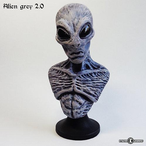 Alien Grey 2 Et Extraterrestre Busto Enigma Urbano Ufo Ovni