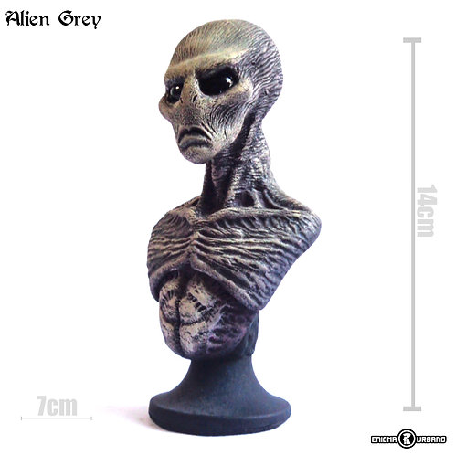 Alien Grey Et Extraterrestre Busto Enigma Urbano Ufo Ovni
