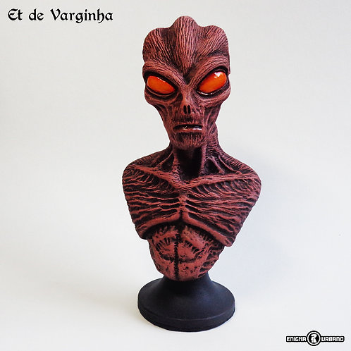 Et de Varginha Extraterrestre Busto Enigma Urbano Ufo Ovni alien